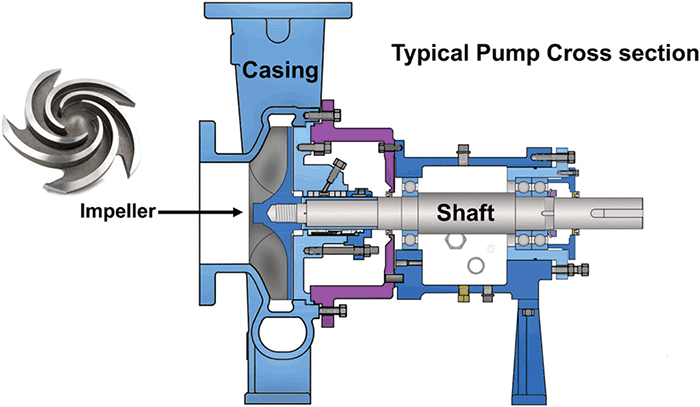 pump cross section