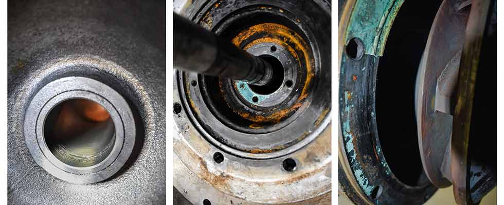 The damage could be found on the bearings, the shaft, impellers