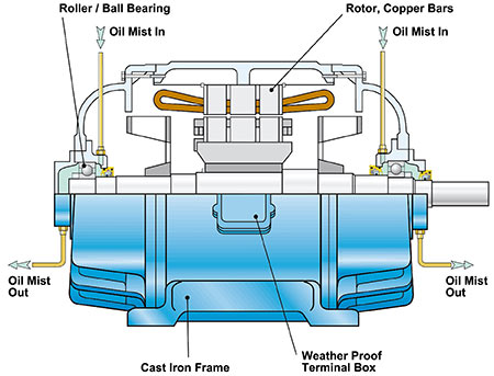 oil mist lubricated electric motor