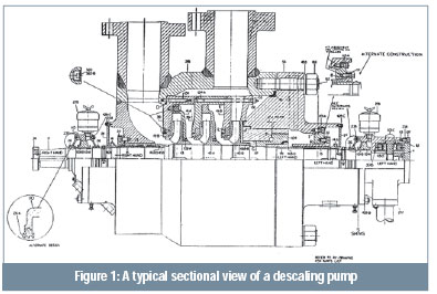 A typical sectional view of a descaling pump