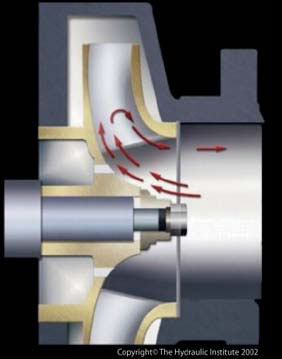 Impeller showing suction recirculation